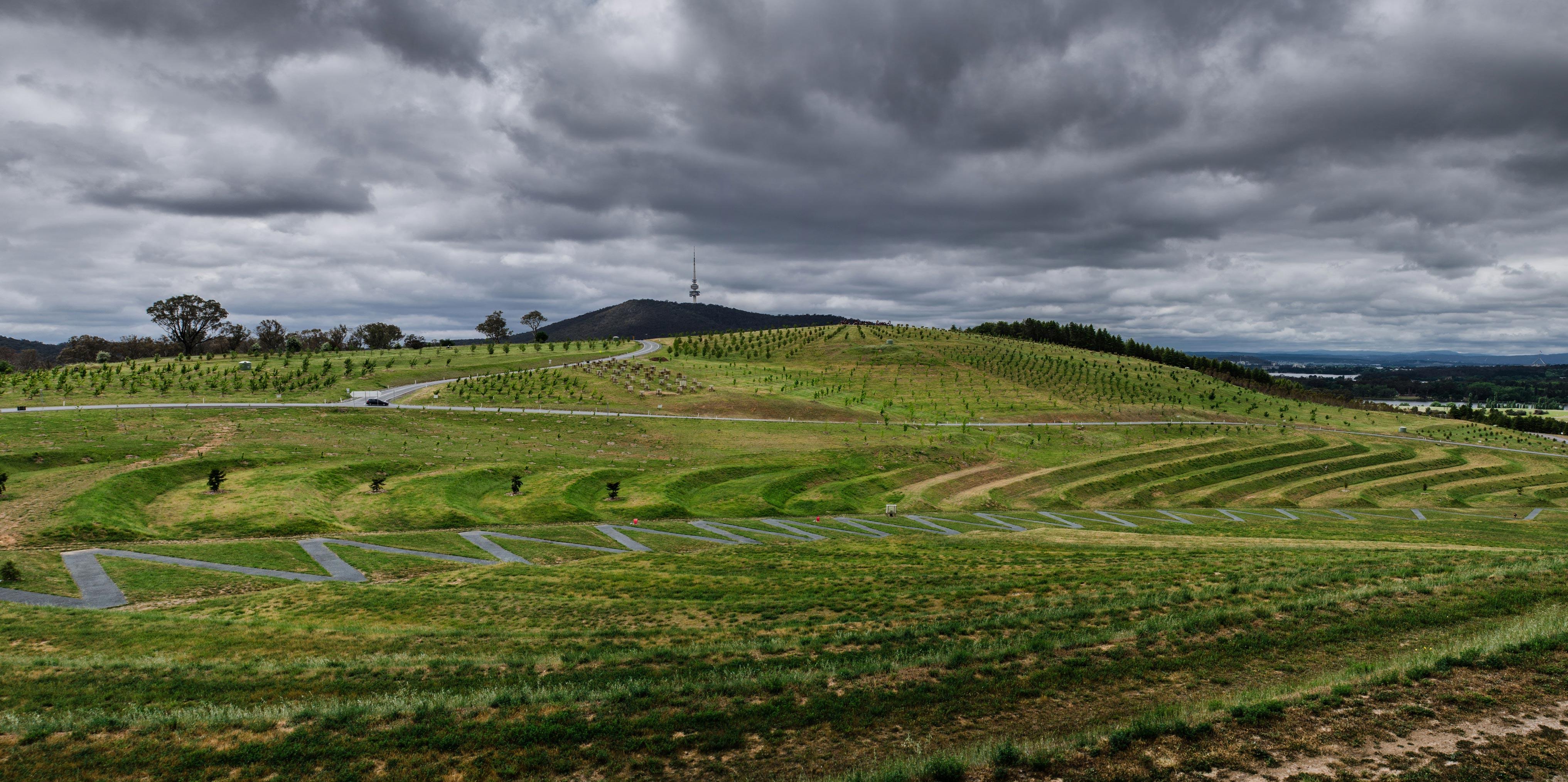 Paesaggi-Australia - DSC 0040  - Garden, Giardino in Canberra Australia - Garden, Giardino in Canberra Australia