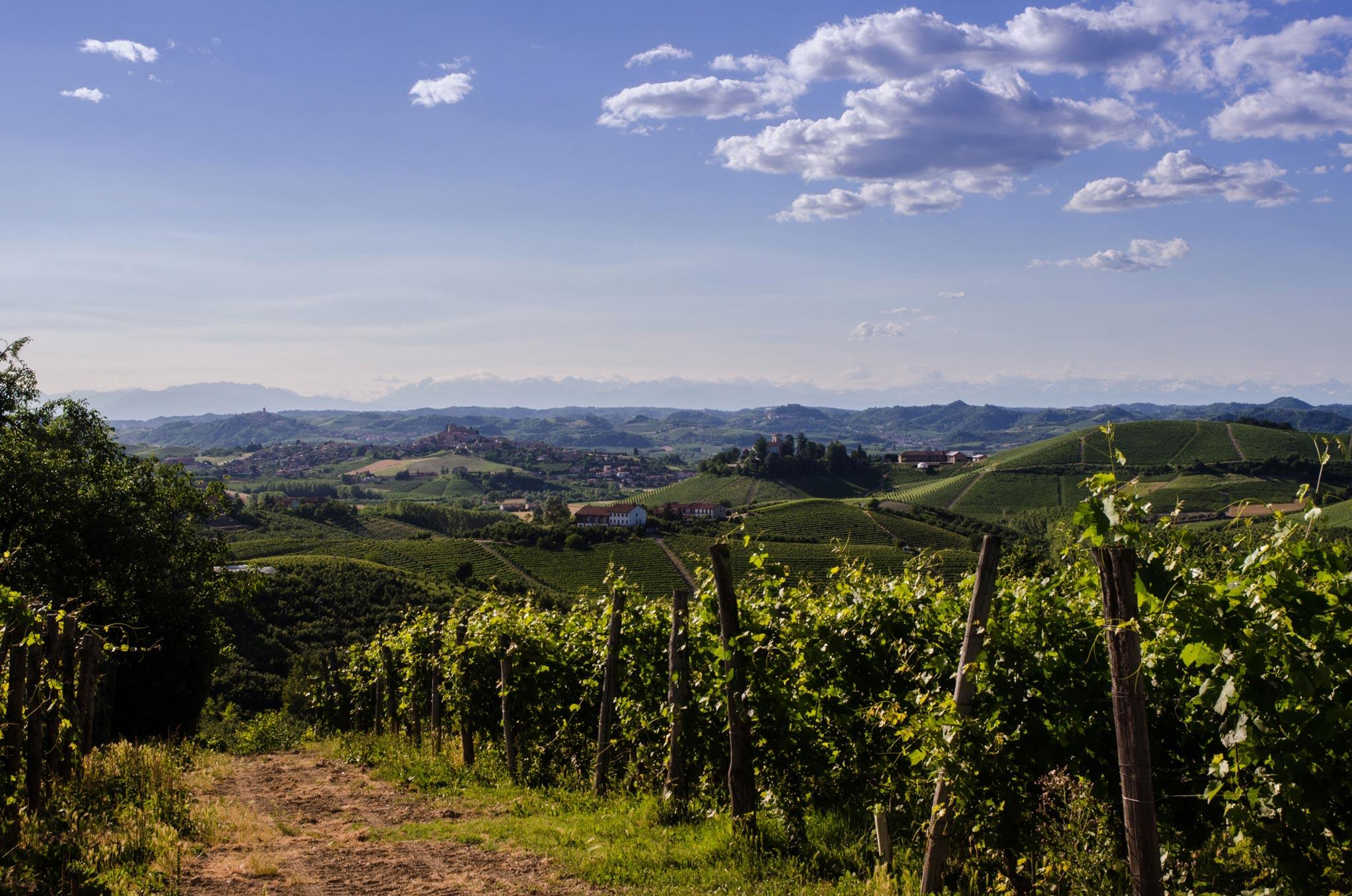 Paesaggi-Italia - DSC 1019 2 1 - Fotografo-nelle-Langhe-Colline-Piemontesi - Fotografo-nelle-Langhe-Colline-Piemontesi