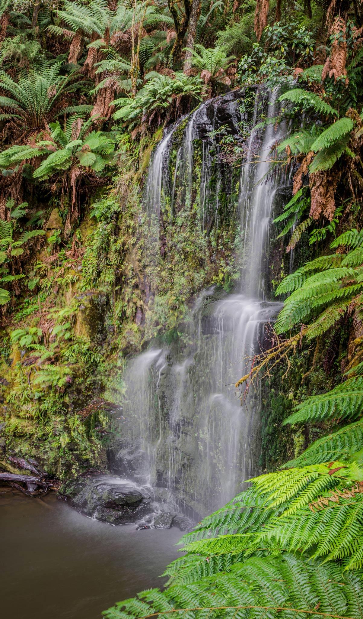 Paesaggi-Australia - DSC 6437  - Travel-photographer-Australia-Victoria - Travel-photographer-Australia-Victoria
