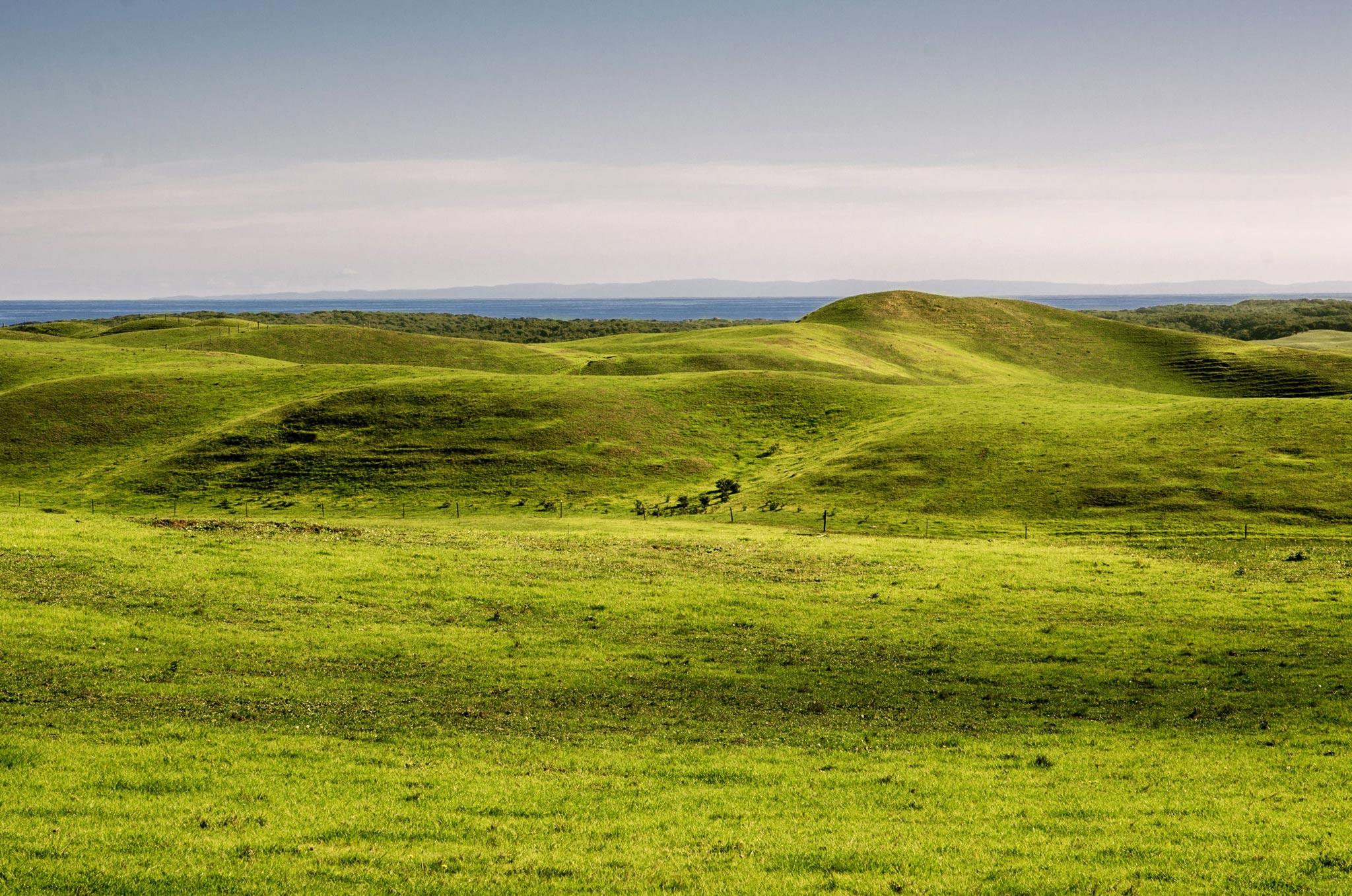 Paesaggi-Australia - DSC 6965 - Travel-photographer-Australia-Victoria - Travel-photographer-Australia-Victoria