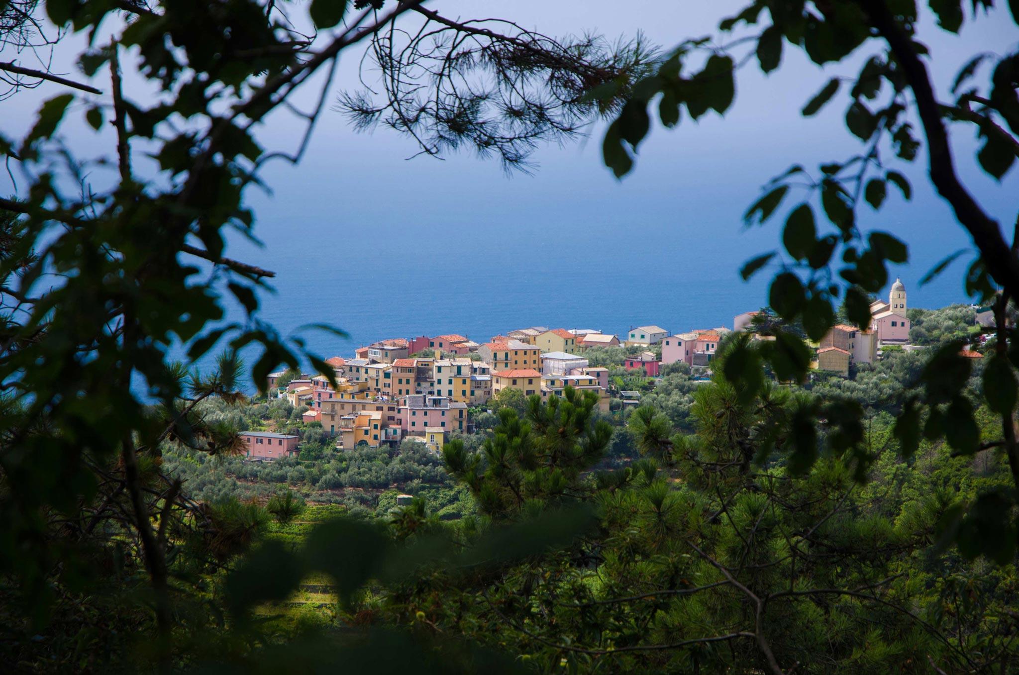 Paesaggi-Italia - Manarola Sentiero Verso Riomaggiore Cinque Terre - Manarola-Sentiero-Verso-Riomaggiore-Cinque-Terre - Manarola-Sentiero-Verso-Riomaggiore-Cinque-Terre
