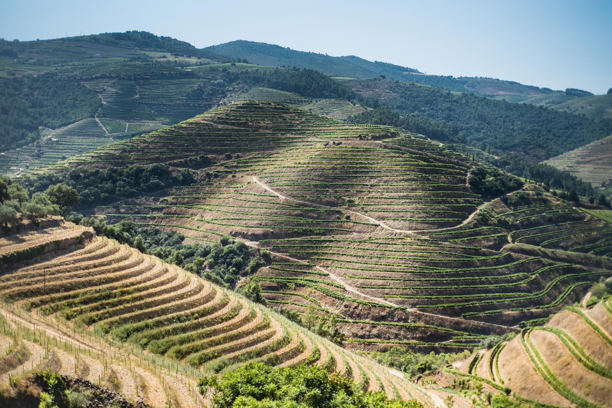 Paesaggi-Portogallo - DSC 2342 - DSC_2342 -